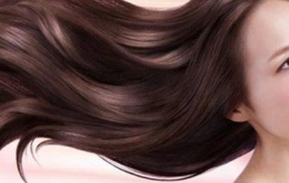 海帶能護髮女人離不開的10種養生食物