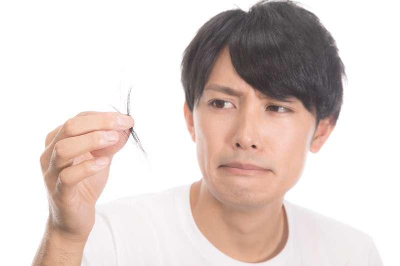 [新聞] 頭髮掉了,根部還有白點?不要怕……這不是毛囊……
